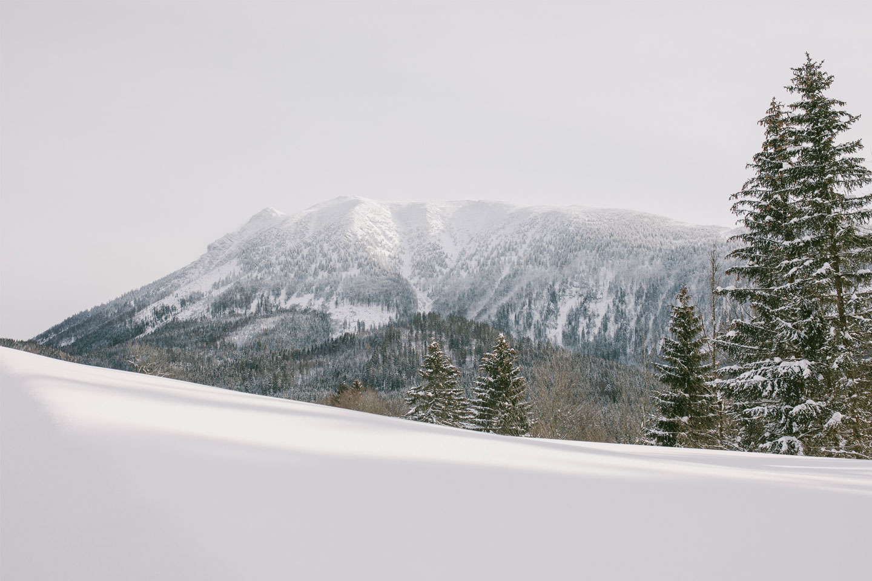 Winterlandschaft_4