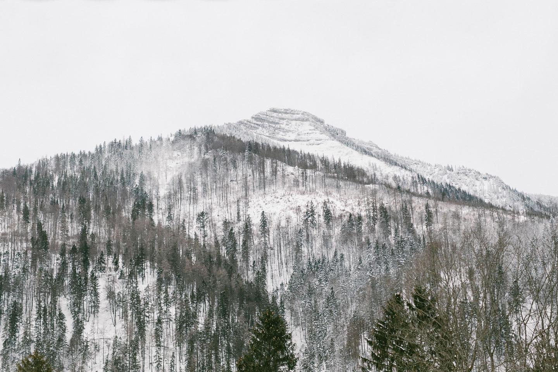 Winterlandschaft_6